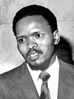 stephen biko essay Stephen biko stephen biko said this to say that no one is superior or inferior because of skin  what would life be like without laws essay sample your e-mail.