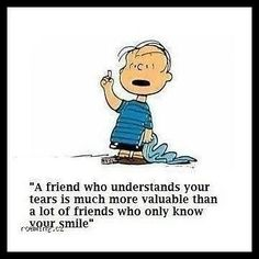 A friend who understands your tears is much more valuable than a lot of friends who only know your smile