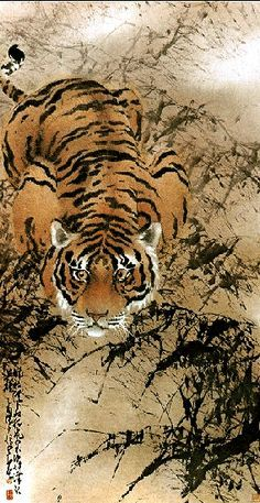 Chinese ink and watercolor - Tiger - by Chao ShaoAng - China… Japanese Painting, Chinese Painting, Japanese Art, Watercolor Tiger, Tiger Painting, Tiger Illustration, Botanical Illustration, Asian Artwork, School Painting