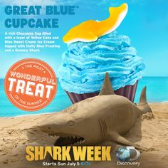 Make your viewing party FINomenal with our Shark Week themed Great Blue Cupcakes at Cold Stone Creamery! #KentsDeals