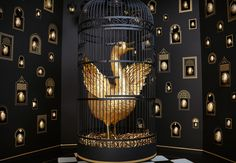 39 Best GOLDEN images   Gold aesthetic, Paper feathers, Gold