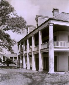 Three Oaks Plantation
