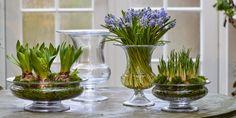 Blomster i vaser og skåle