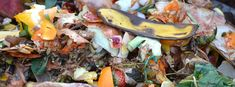 Reduce the amount of food scraps you throw out by adding to compost in soil. Improve your garden soil even without a composter. Eco Garden, Garden Soil, Organic Gardening, Gardening Tips, Sustainable Gardening, Composting At Home, Composting Methods, How To Make Compost, Bokashi