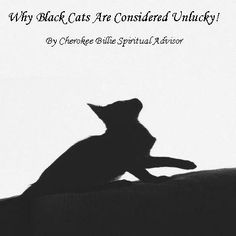Why Black Cats Are Considered Unlucky! Halloween Trick Or Treat, Halloween Boo, Norse Goddess, Halloween Traditions, Secret Keeper, Animal Totems, Rainbow Bridge, Months In A Year, Samhain