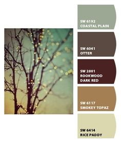 Is it sad that I actually know these Sherwin Williams paint colors? Almost used the top one in a project lol