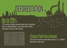 INFOGRAPHIC: Celebrate International Day of Forests with these important forest facts | Inhabitat - Sustainable Design Innovation, Eco Architecture, Green Building