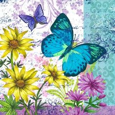 Médio - butterfly print