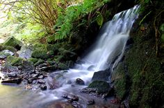 Hachijojima, Japan waterfall 八丈島 御幸滝