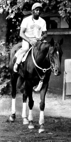 Ruffian- was it possible she was as fast or faster than Secretariat? Sadly, she's gone. Beautiful girl.