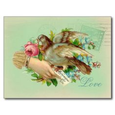 ==>>Big Save on          	Victorian Valentine Bird and rose Post Card           	Victorian Valentine Bird and rose Post Card you will get best price offer lowest prices or diccount couponeDiscount Deals          	Victorian Valentine Bird and rose Post Card lowest price Fast Shipping and save y...Cleck See More >>> http://www.zazzle.com/victorian_valentine_bird_and_rose_post_card-239016099588913709?rf=238627982471231924&zbar=1&tc=terrest