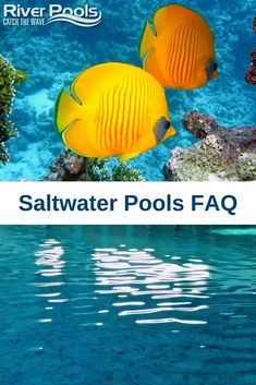 Have you been considering installing a saltwater pool or switching to a salt system? In this article, we've answered the most commonly asked questions about saltwater pools to help you decide if a salt pool is the best choice for you. Fiberglass Pool Manufacturers, Fiberglass Pools, Above Ground Pool, In Ground Pools, Pool Plaster, Automatic Pool Cover, Metal Handrails, Inground Pool Designs, Pool Cost