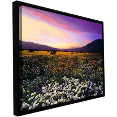ArtWall Dean Uhlinger Adj Borrego Desert Spring Floater Framed Gallery-Wrapped Canvas, Size: 24 x 32, Yellow