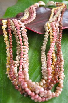 "NIʻIHAU SHELL LEI - Kahelelani 5-strand lei. Perhaps the most exciting leis are the ""Lei Kahelelani"" (tiny shells) & ""Lei Kipona"" (mixed Momi & Kahelelani shells). Kahelelani shells are about 1/4 the size of a momi shell & are the most delicate and difficult to pierce & string.  They come in a variety of colors, including hot pink, lemon yellow, red, maroon, beige-green & brown. The introduction of Kahelelani shells into any lei increases its beauty & value. 