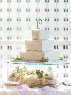 raised cake table scape with succulents