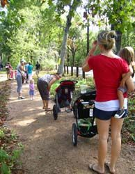 Tyke Hikes-Nature walk for toddlers at Houston Arboretum