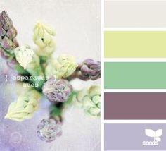 asparagus hues by patsy