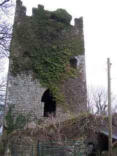 12th century Norman keep/guard tower. Ballingarry, Ireland. That  electric pole wasn't always there :)   Photo: James L. Root