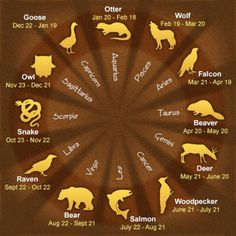 Daily Horoscope Taureau- 12 Native American Astrological Signs and Their Meaning. - - Daily Horoscope Taureau- 12 Native American Astrological Signs and Their Meanings Native American Astrology, Native American Wisdom, American Indians, Native American Totem, Native American Animal Symbols, Native American Spirituality, Native American Tattoos, American Art, Reiki