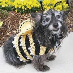 Bumblebee Costume :: Roundup of free crochet pet costumes on Moogly!