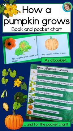Pumpkin Life Cycle Book and Pocket Chart Kindergarten Reading Activities, Reading Resources, Science Lessons, Science Activities, Language Lessons, Language Arts, Pumpkin Life Cycle, First Grade Reading, Primary Classroom