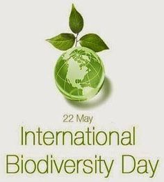 "The United Nations has proclaimed May 22  as International Day for Biological Diversity (IDB)so as to increase understanding and awareness of biodiversity issues. The theme for 2017 is ""Biodiversity and Sustainable Tourism"", which has been chosen to coincide with the observance of 2017 as the International Year of Sustainable Tourism for Development."