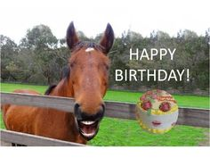 A cool horse singing happy happy birthday and a rap song Special Happy Birthday Wishes, Funny Happy Birthday Messages, Happy Birthday Cousin, Happy Birthday For Him, Happy Birthday Wishes Quotes, Birthday Songs, Singing Happy Birthday, Birthday Greetings, Funny Birthday