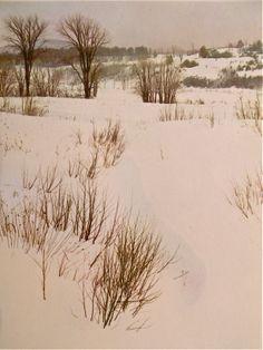 Eliot Porter   Snowscape by Eliot Porter (1969)