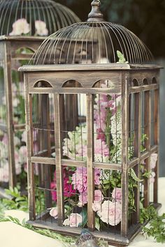 birdcages... indoor herb garden? There is an idea for a kitchen counter of a closed porch.