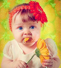 Gif Paradise — La ternurita el girasol compartida por Mariana...