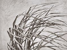 Wendy Kahle(American)  Flowing Grass  2010  Intaglio print with aquatint