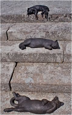 """Sculpture """"Cats on the steps"""", Delamore House, UK (Delamore House is the former estate of Admiral Parker, one of the captains of the armada of Nelson in the Battle of Trafalgar)"""