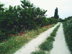 Moratalla, Murcia, Spain