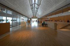 louis kahn kimbell art museum - Cerca con Google