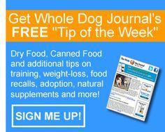 Canine Pancreatitis - Whole Dog Journal Article
