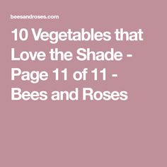 10 Vegetables that Love the Shade - Page 11 of 11 - Bees and Roses
