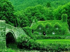 I'd like to visit this cottage =) Looks like Ireland, Germany, Austria -- the lake district, or English countryside to me! Any one of those would be fine! Cottages Anglais, Fairytale Cottage, English Countryside, Green Life, Cottage Homes, Cozy Cottage, Irish Cottage, Cottage Living, Country Living