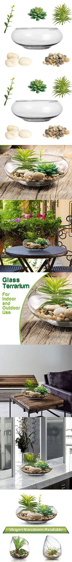 Clear Glass Terrarium Vase, Planter Bowl with Succulents and Decorative Stones - Decorative Centerpiece (Straight Cut, Top Opening)