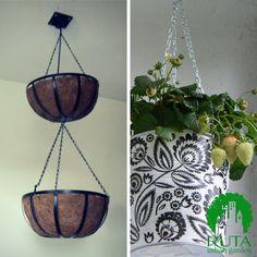 Wiszące pojemniki np. doniczki lub kosze (hanging baskets or pots)