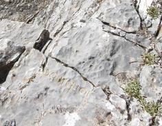 """""""pourquoi"""" est un mot gravé et doré dans la pierre par herman de vries dans le village d'Entrages (Alpes-de-Haute-Provence, France). #orcadredorure#hermandevries#stone#art#gold#entrages#hauteprovence Haute Provence, Provence France, Le Village, Mount Rushmore, Contemporary Art, Mountains, Nature, Outdoor, Alps"""