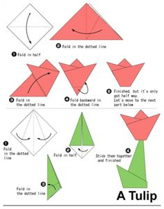 How to learn origami? The ultimate resource My daughter came home the other day asking to learn origami. Sadly, all I could remember from my youth was how to make a butterfly. And then I realized Tulip Origami, Instruções Origami, Origami Mouse, Origami Yoda, Kids Origami, Origami Ball, Origami Star Box, Origami Dragon, Origami Fish