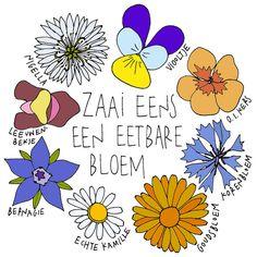 Mme Zsazsa vertelt: Nu zaaien: Eetbare bloemen