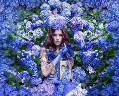 Kirsty Mitchell (Wonderland : The Secret garden)  http://www.kirstymitchellphotography.com/galleries.php