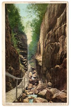Antique Vintage Postcard The Flume Looking up by OldTimePostcards, $8.00