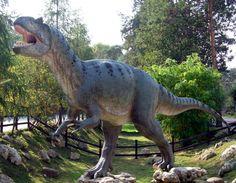 Учени откриха свидетелства за 21 вида динозаври в Австралия - https://novinite.eu/ucheni-otkriha-svidetelstva-za-21-vida-dinozavri-v-avstraliya/
