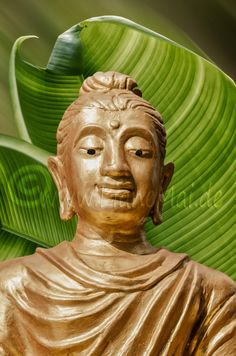 Digital Download, Traumwelten, Decoratives, Deco, Foto, Buddha, Buddhismus, Glaube, Meditation von PhotoDreamWorldArt auf Etsy
