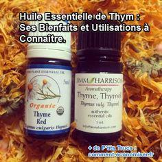 les utilisations et bienfants pour la santé de l'huile essentielle de thym