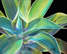 This is a pastel painting of a Blue Agave plant. I love the incredible depth that these spiny succulents take on in the sunlight. I really enjoyed painting it. Agave Plant, Cactus, Desert Art, Art Graphique, Pastel Art, Watercolor Paintings, Watercolors, Leaf Paintings, Painting & Drawing