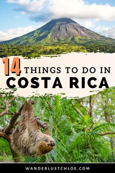 This Costa Rica itinerary is the ultimate guide to spending two weeks in Costa Rica. Find out about visiting La Fortuna, Arenal, Monteverde, Naranjo, Corcovado National Park, Orosi and Puerto Viejo. Whether you're planning a honeymoon, backpacking or something in between, you'll learn where to see the amazing wildlife, packing tips, where photography lovers should go for pictures, and the best destinations and resorts for your trip. #costarica #wildlife #volcano #travel inspiration #