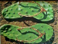 Cactus FlipFlops
